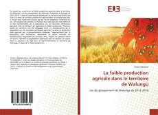 La faible production agricole dans le territoire de Walungu kitap kapağı