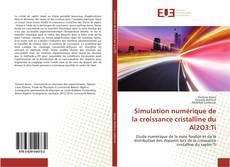 Copertina di Simulation numérique de la croissance cristalline du Al2O3:Ti