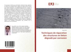 Couverture de Techniques de réparation des structures en béton dégradé par corrosion