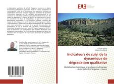 Couverture de Indicateurs de suivi de la dynamique de dégradation qualitative