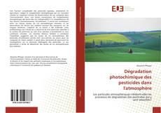 Copertina di Dégradation photochimique des pesticides dans l'atmosphère