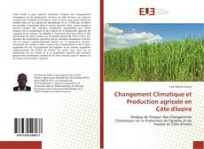 Buchcover von Changement Climatique et Production agricole en Côte d'Ivoire