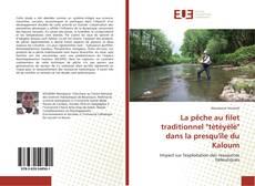 """La pêche au filet traditionnel """"tètèyèlè"""" dans la presqu'île du Kaloum kitap kapağı"""