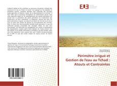 Capa do livro de Périmètre irrigué et Gestion de l'eau au Tchad : Atouts et Contraintes