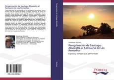 Buchcover von Peregrinación de Santiago Ahuizotla al Santuario de Los Remedios