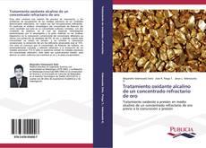 Tratamiento oxidante alcalino de un concentrado refractario de oro的封面