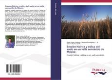 Capa do livro de Erosión hídrica y eólica del suelo en un valle semiárido de México