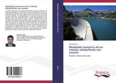 Bookcover of Modelado numérico de un interfaz sólido/fluido con erosión
