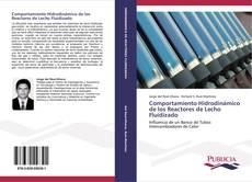 Comportamiento Hidrodinámico de los Reactores de Lecho Fluidizado的封面