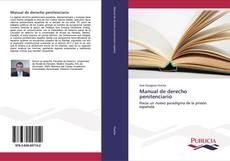 Manual de derecho penitenciario kitap kapağı