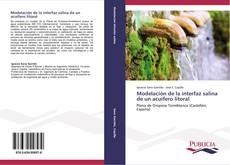 Portada del libro de Modelación de la interfaz salina de un acuífero litoral