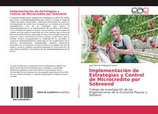 Обложка Implementación de Estrategias y Control de Microcredito por Sobreend