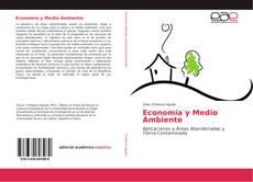 Buchcover von Economía y Medio Ambiente