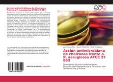 Обложка Acción antimicrobiana de chalconas frente a P. aeruginosa ATCC 27 853