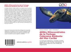 Couverture de ARNts Mitocondriales de la Tortuga Cabezona Anidante del Mar Caribe