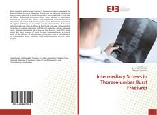 Bookcover of Intermediary Screws in Thoracolumbar Burst Fractures