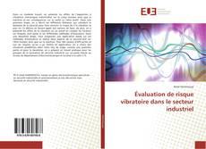 Borítókép a  Évaluation de risque vibratoire dans le secteur industriel - hoz