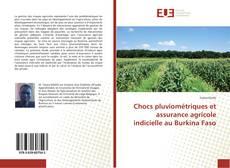 Bookcover of Chocs pluviométriques et assurance agricole indicielle au Burkina Faso