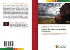 Borítókép a  Índice de sustentabilidade municipal - hoz