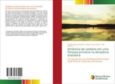 Обложка Dinâmica de carbono em uma floresta primária na Amazônia brasileira