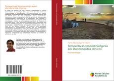 Copertina di Perspectivas fenomenológicas em atendimentos clínicos