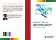 Capa do livro de Cultura e gestão de segurança no trabalho em organizações industriais