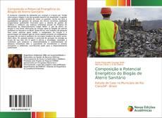 Composição e Potencial Energético do Biogás de Aterro Sanitário的封面