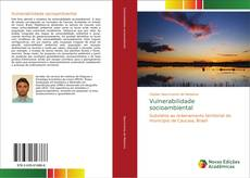 Bookcover of Vulnerabilidade socioambiental