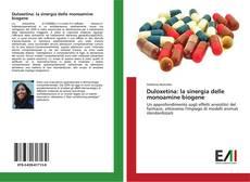 Copertina di Duloxetina: la sinergia delle monoamine biogene