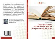Modification de la microstructure dans un alliage Al-Cu-Mg par ECAE kitap kapağı
