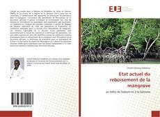 Etat actuel du reboisement de la mangrove的封面