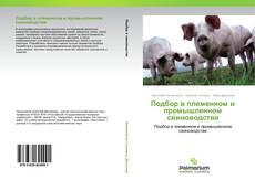 Copertina di Подбор в племенном и промышленном свиноводстве