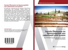 Bookcover of Soziale Ökonomie im Spannungsfeld von Lebenswelt und System