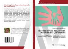 Bookcover of Interdisziplinäre Kooperation innerhalb der Geburtshilfe