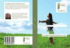 Capa do livro de La petite chose tombée du ciel