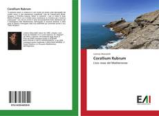 Bookcover of Corallium Rubrum
