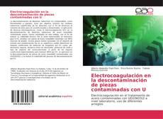 Обложка Electrocoagulación en la descontaminación de piezas contaminadas con U
