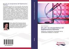 Bookcover of E6 y E7, las oncoproteínas del Papilomavirus Humano