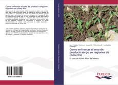 Bookcover of Como enfrentar el reto de producir sorgo en regiones de clima frío
