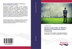 Borítókép a  Sector asegurador en México: dinámica y reestructuración financiera - hoz
