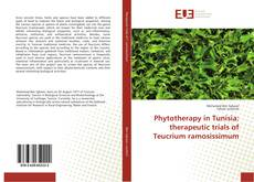 Bookcover of Phytotherapy in Tunisia: therapeutic trials of Teucrium ramosissimum