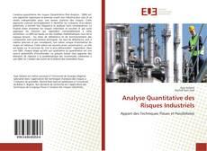 Bookcover of Analyse Quantitative des Risques Industriels