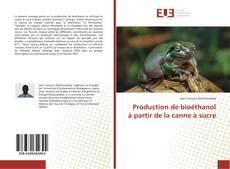 Portada del libro de Production de bioéthanol à partir de la canne à sucre