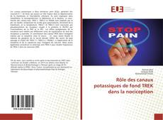 Bookcover of Rôle des canaux potassiques de fond TREK dans la nociception