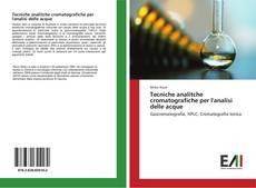 Buchcover von Tecniche analitche cromatografiche per l'analisi delle acque