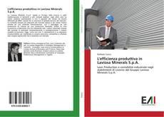 Couverture de L'efficienza produttiva in Laviosa Minerals S.p.A.