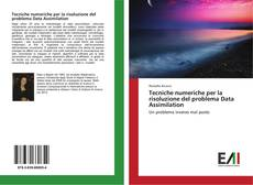 Bookcover of Tecniche numeriche per la risoluzione del problema Data Assimilation