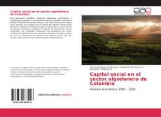 Couverture de Capital social en el sector algodonero de Colombia
