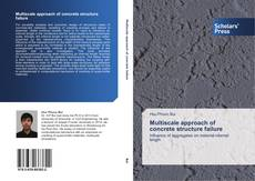 Buchcover von Multiscale approach of concrete structure failure