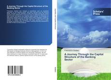 Couverture de A Journey Through the Capital Structure of the Banking Sector